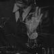 pinot gallizio installazione interattiva anticamera della morte gianmaria vernetti franz goria